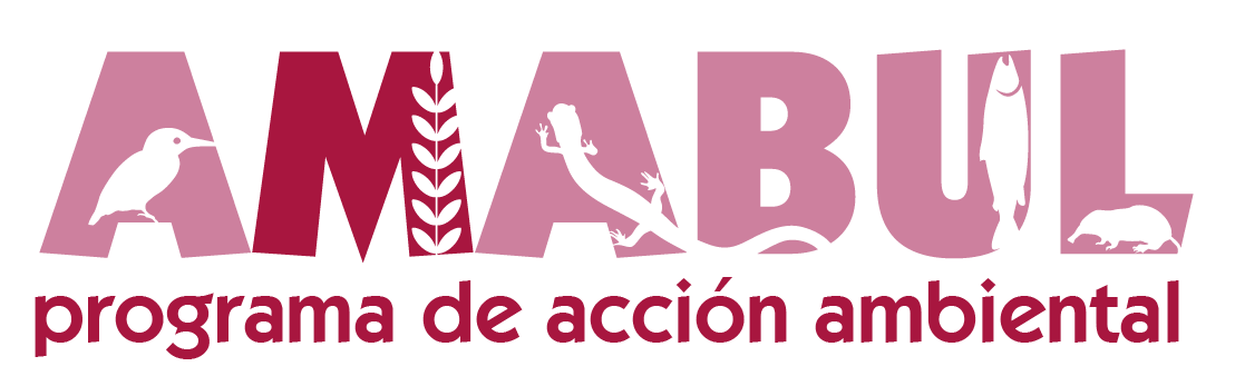 Acción Ambiental