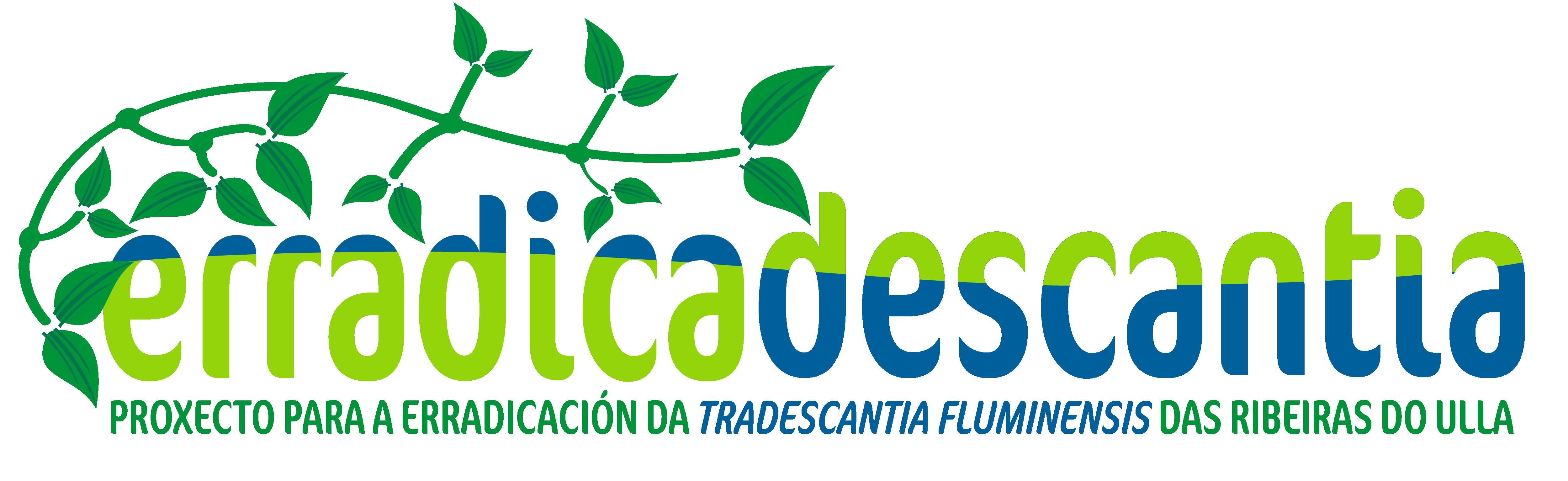erradicadescantia